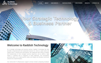 Raddish Technology - Web Design in Malaysia
