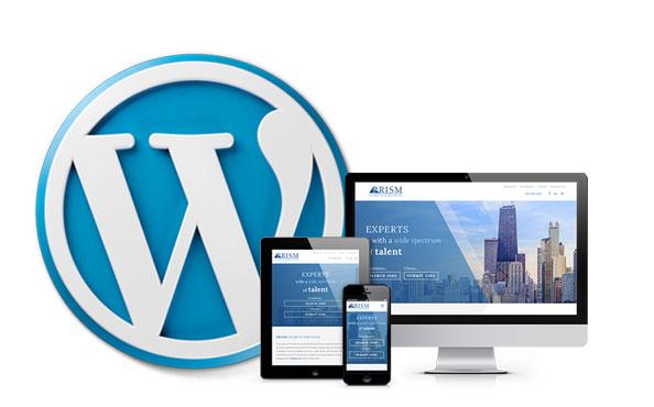 WordPress for Enterprise - Custom WordPress Development